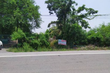 ขายที่ดิน 40 ไร่ ติดถนนเลียบคลอง 11 (เส้นรังสิต-นครนายก) หนองเสือ ปทุมธานี